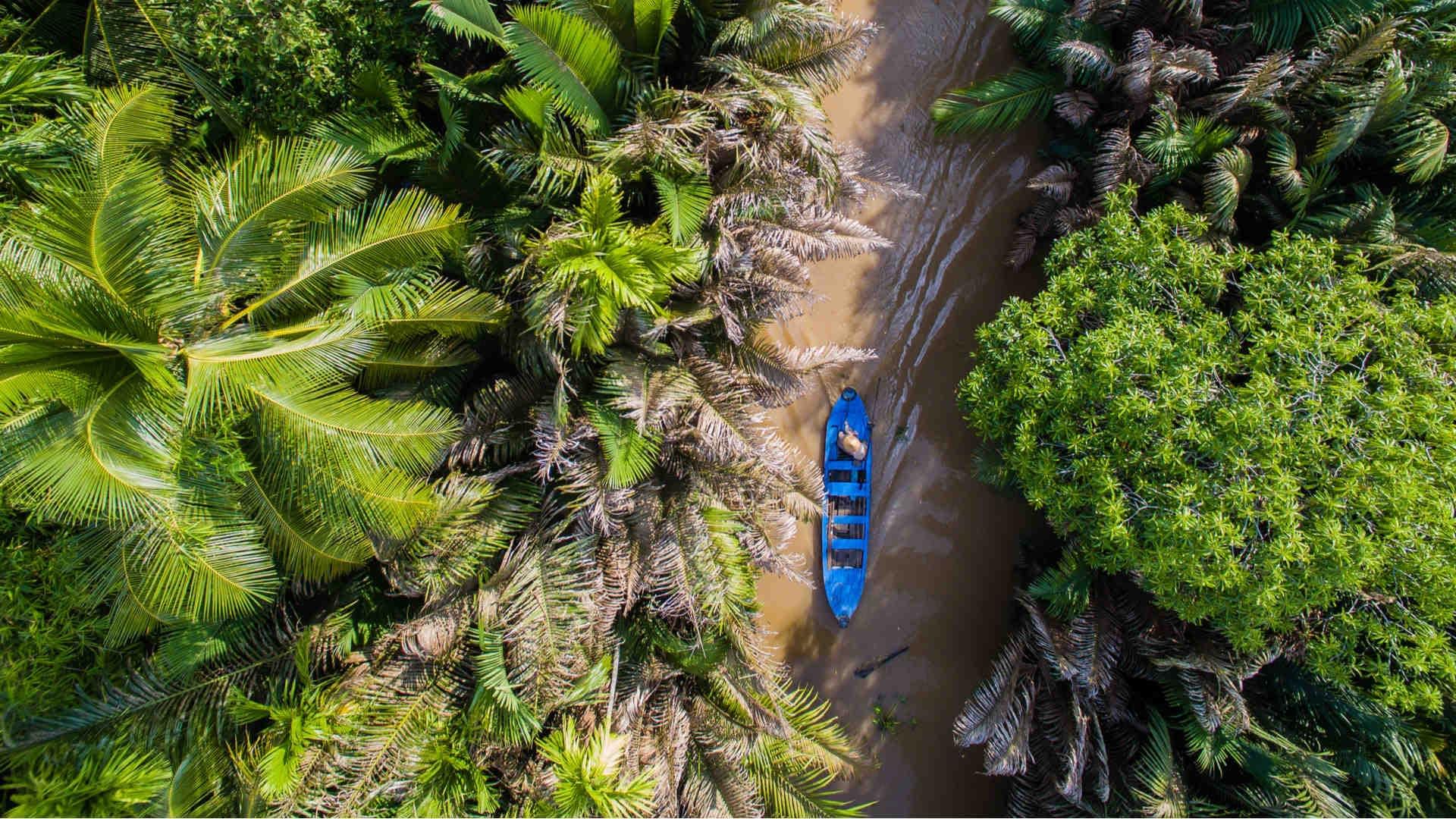 Mekong Delta Fischerboot zwischen Palmen