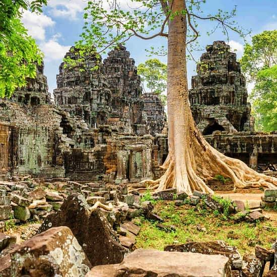 Ta Prohm Temple Ankor Wat Cambodia